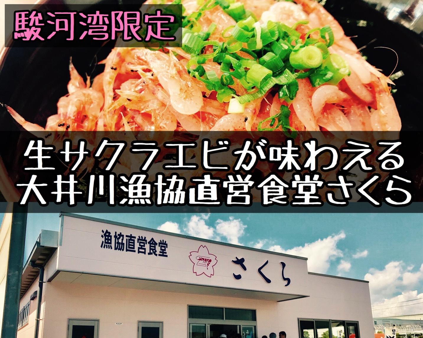 大井川・サクラエビ・シラス